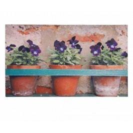 Vchodová rohožka Flower Pots 45x75 cm