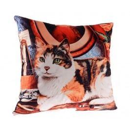 Dekorační polštář Master Cat 45x45 cm