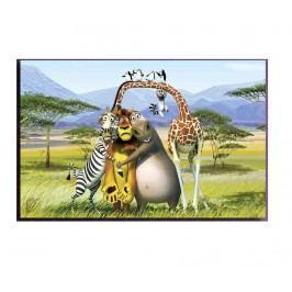 Obraz Madagascar 45x70 cm