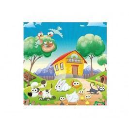 Obraz Happy Farm 45x45 cm
