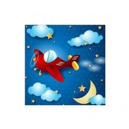 Obraz Night Plane 45x45 cm