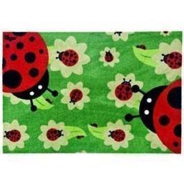 Vchodová rohožka Ladybug 50x70 cm