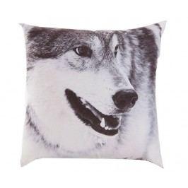 Dekorační polštář Wolf 45x45 cm