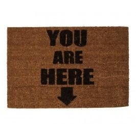 Rohožka You Are Here 40x60 cm