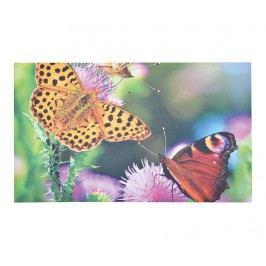 Rohožka Butterfly 45.5x76 cm