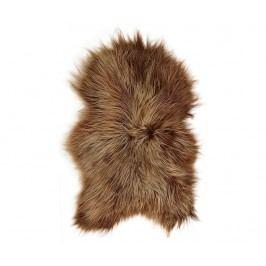 Jehněčí kožešina Icelandic Long Rusty Brisa 50x90 cm