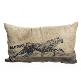 Dekorační polštář Wild Cat 30x50 cm