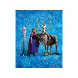 Pléd Disney Frozen Team 130x160 cm