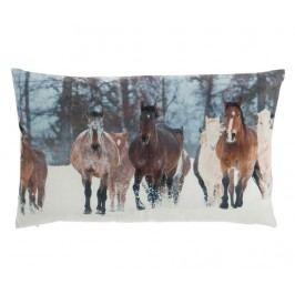 Dekorační polštář Wild Horses 30x50 cm