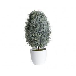 Umělá rostlina v květináči Plante Cupressus Green