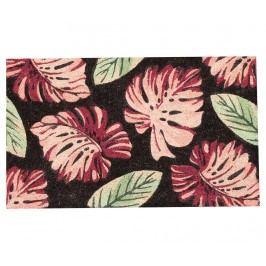 Vchodová rohožka Palm Leaves 45x75 cm