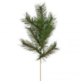 WINTERGREEN Větvička borovice