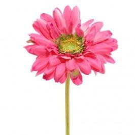 FLORISTA Gerbera - růžová