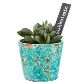 NAME IT! Cedulky pro květiny 3 ks