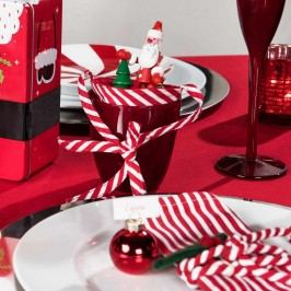 SHAKY STEVEN Santa