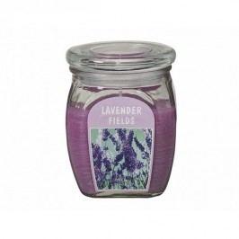 Svíčka ve skle Levandule, 430 g Dekorativní svíčky