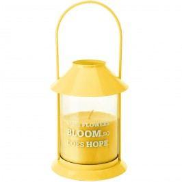 Lucerna se svíčkou, žlutá