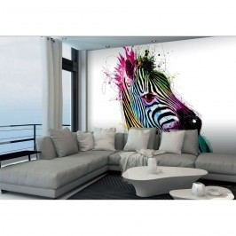 Up and Down Designová fototapeta XXL Zebra, 364 x 252 cm