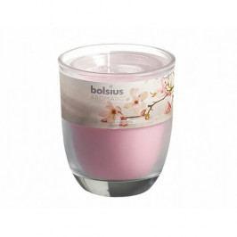 Svíčka ve skle Bolsius Magnolia 80x70 Dekorativní svíčky