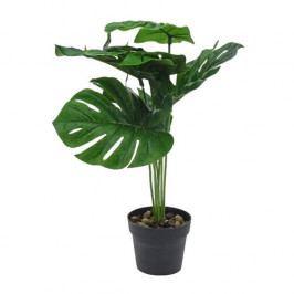 Koopman Umělá rostlina v květináči Mollie, 40 cm