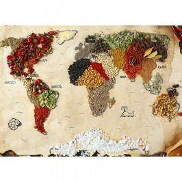 AG Art Fototapeta XXL Mapa koření 360 x 270 cm, 4 díly