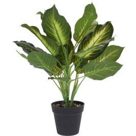 Koopman Umělá rostlina v květináči Annie, 45 cm