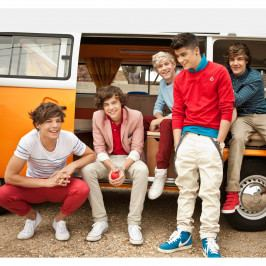 Fototapeta One Direction, 315 x 232 cm