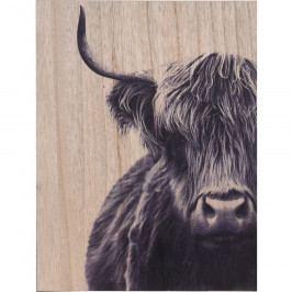 Obraz na dřevě Bull, 28 x 38 cm