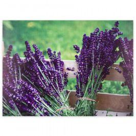 Obraz na plátně Lyon Lavender, 78 x 58,5 cm