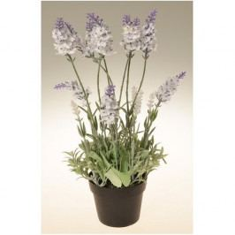Umělá květina Levandule v květináči bílá, 38 cm