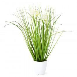 Umělá kvetoucí tráva Otilie bílá, 36 cm