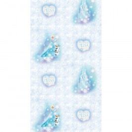 AG Art Dětská fototapeta Ledové království Elsa, 53 x 1005 cm