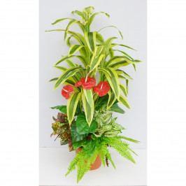 Aranžmá umělých květin Dracéna s přízdobami, 150 cm