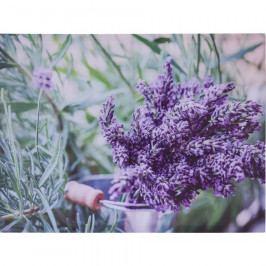 Obraz na plátně Amiens Lavender, 78 x 58,5 cm