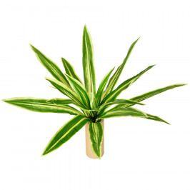 Umělá květina Neoregelia, pr. 60 cm