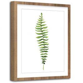 Obraz Styler Modernpik Greenery Wooden Fern, 30 x 40 cm