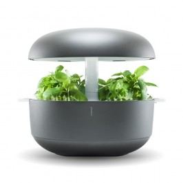 Domácí inteligentní šedá zahrádka Plantui 6 Smart Garden Grey