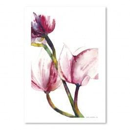 Plakát Magnolia od Suren Nersisyan Obrazy, rámy atabule