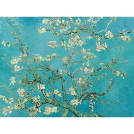 Reprodukce obrazu Vincenta van Gogha - Almond Blossom, 70x50cm Obrazy, rámy atabule