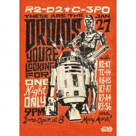 Nástěnná cedule PosterPlate Star Wars Legends - Droids