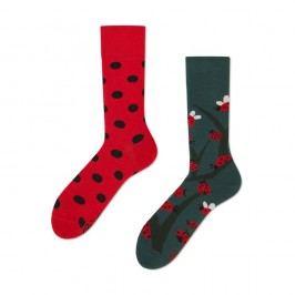 Ponožky Many Mornings Dots & Bugs,vel.35–38