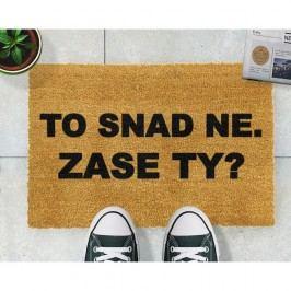 Rohožka Artsy Doormats Zase ty?,40x60cm