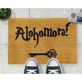 Rohožka z přírodního kokosového vlákna Artsy Doormats Alohomora,40x60cm