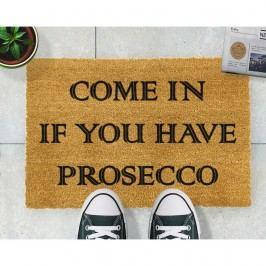 Rohožka Artsy Doormats Prosecco,40x60cm