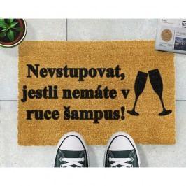 Rohožka Artsy Doormats Šampus,40x60cm