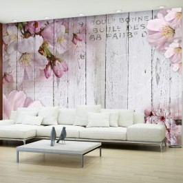 Velkoformátová tapeta Bimago Apple Blossoms, 400x280cm