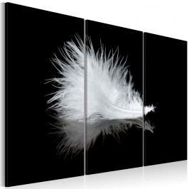 Vícedílný obraz na plátně Artgeist Feather, 60 x 40 cm