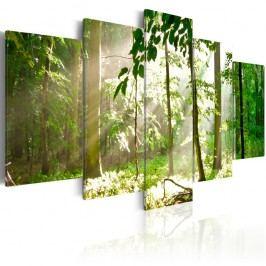 Vícedílný obraz na plátně Artgeist Sunbeam, 100x50cm Obrazy, rámy atabule