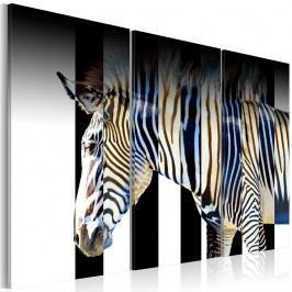 Vícedílný obraz na plátně Artgeist Stripes, 60 x 40 cm