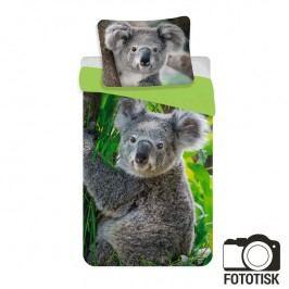 Dětské ložní povlečení Koala 140 x 200 cm, 70 x 90 cm